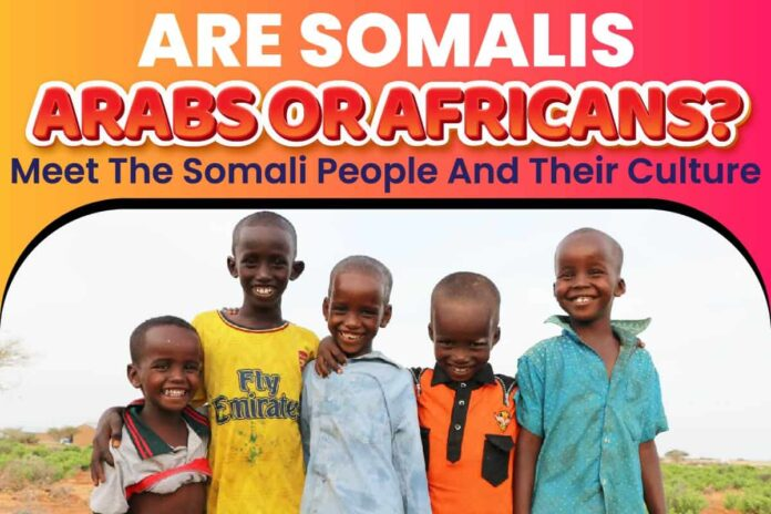 Are Somalis Arabs or Africans