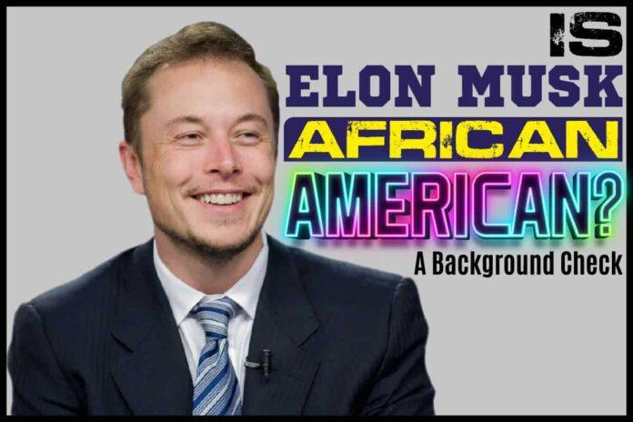 Is Elon Musk African American