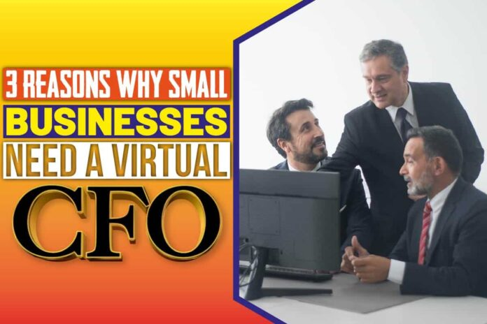3 Reasons Why Small Businesses Need a Virtual CFO